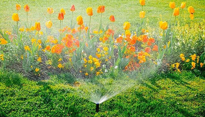 Эффективная система для полива на даче